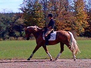 Chris von Gartzen riding Diego